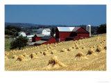 Amish Farm with Sheaves of Wheat Reproduction photographique par David M. Dennis