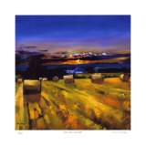 Harvest Sunset Collectable Print by Davy Brown