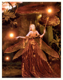 The Red Fairy Prints by Howard David Johnson