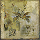 Botanical Motif I Prints by  Augustine (Joseph Grassia)