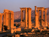 Columns of Ruins at Dawn, Palmyra, Syria Photographic Print by Wayne Walton