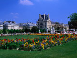 Garden Outside the Louvre Paris, France Photographic Print by John Hay