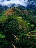 Rice Terraces Around Banaue, Banaue, Philippines Photographic Print by Richard I&#39;Anson