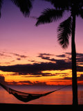 Hammock on Beach, Fiji Photographic Print by David Wall