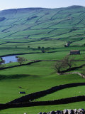 Green Dales and Traditional Stone Walls, England Photographic Print by Stephen Saks