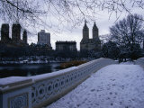 Central Park in Winter, New York City, New York, USA Photographic Print by Angus Oborn