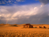 Abandoned Stone Farmhouse on the Barrier Highway Near Burra, Burra, South Australia, Australia Photographie par Ross Barnett