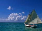 Sailing Boat, Ambergris Caye, Belize Photographic Print