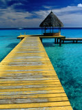 Pontoon and Hut Over the Lagoon, Rangiroa, Taumotus, The, French Polynesia Fotografie-Druck von Jean-Bernard Carillet