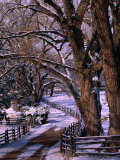 Country Road Leading to Nambe Ranch in Early Winter, New Mexico, USA Fotografie-Druck von Ralph Lee Hopkins