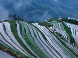 Rice Terraces in the Mountains of Long Ji, Guangxi, China Photographic Print by Keren Su