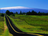 The Saddle Road Connecting East and West Hawaii, with Mauna Loa in the Distance, Hawaii, USA Photographic Print by Ann Cecil