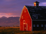 Spring Sunshine on a Barn in Montana, Montana, USA Photographie par Carol Polich