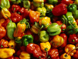 Capsicums at Brixton Market, Brixton, London, England Fotodruck von Neil Setchfield