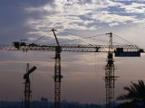 Construction Site Cranes at Sunset, Dubai, United Arab Emirates Photographic Print by Phil Weymouth