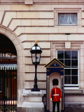 Guard at Buckingham Palace, London, England Photographic Print by Richard I'Anson