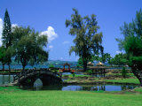 A Wooden Bridge in the Japanese Style in the Liliuokalani Gardens, Hilo, Hawaii, USA Photographic Print by Ann Cecil