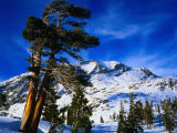 Snow Covered Mountain in Sierra Nevada, California, USA Photographic Print by Rob Blakers