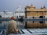 Anthony Plummer - Sikh Man Meditating in Front of the Golden Temple, Amritsar, India Fotografická reprodukce
