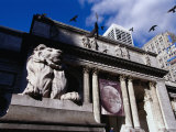 Stone Lions on Fifth Avenue Entrance to the New York Library, New York City, New York, USA Photographic Print by Angus Oborn