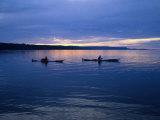 Sea Kayakers Near Cooks Beach, Freycinet National Park, Tasmania, Australia Photographic Print by Grant Dixon