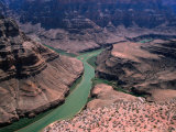 Grand Canyon West, Hualapai Indian Reservation View, USA Fotografiskt tryck av Mark Newman