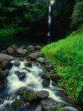 Water Streaming Over Rocks at Olemoe Waterfall, Olemoe Falls, Samoa 写真プリント : トム・コックレム
