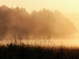 Morning Mist, Lake Vattern, Jonkoping, Sweden Photographic Print by Christer Fredriksson