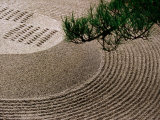 Raked Gravel Zen Garden at Eikando Temple, Kyoto, Japan Photographic Print by Frank Carter