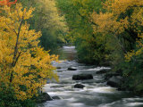 Autumn Colours on the Banks of the Rue River, Quebec, Canada Photographic Print by Mark Newman