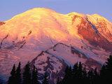 Slopes of Mt. Rainier in Sunrise Area, Mt. Rainier National Park, USA Photographic Print by John Elk III