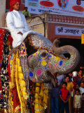 Man Riding Decorated Elephant in Street Parade of Annual Elephant Festival, Jaipur, India Fotografisk tryk af Paul Beinssen