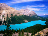 Overhead of Peyto Lake and Mountains, Summer, Banff National Park, Canada Fotografisk tryk af David Tomlinson
