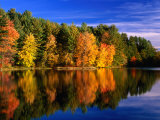 Autumn Trees in New Hampshire, New Hampshire, USA Photographic Print by Carol Polich