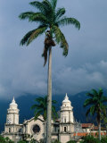 Cathedral of Merida and Palm Tree, Merida, Venezuela Photographic Print by Krzysztof Dydynski