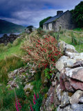 Abandoned Cottage on the Famine Relief Road in Killary Harbour, Connemara, Connaught, Ireland Photographic Print by Gareth McCormack