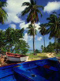 Wooden Fishing Boats Among Palm Trees, Pigeon Point, Trinidad &amp; Tobago Photographic Print by Michael Lawrence