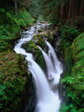 Sol Duc Falls Olympic National Park, Washington, USA Photographic Print by Rob Blakers