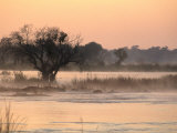 Early Morning Mist Rises off the Zambezi River, Zambezi National Park, Matabeleland North, Zimbabwe Lmina fotogrfica por Ariadne Van Zandbergen