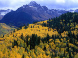 Forest with Mountain in Distance Mt. Sneffels Wilderness Area, South Carolina, USA Photographic Print by Rob Blakers