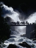 Pony Carts Crossing Bridge Over Waterfall and Rapids, Briksdal, Norway Photographie par Craig Pershouse