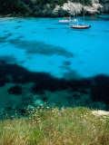Turquoise Waters at Marcarella, Menorca, Balearic Islands, Spain Photographic Print by Dallas Stribley