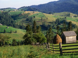 Rural Countryside, Sacele, Brasov, Romania, Photographic Print by Diana Mayfield