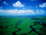 Aerial View of Wetlands, Everglades National Park, USA, Photographic Print