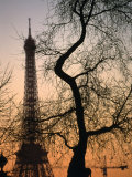 Sunset Over the Jardin Des Tuileries and Eiffel Tower, Paris, Ile-De-France, France Photographic Print by Martin Moos