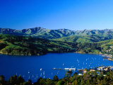 Akaroa Harbour, Banks Peninsula, Canterbury, New Zealand Fotografisk tryk af Paul Kennedy