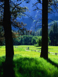 Couples Walk on Paths Through the Spring Fields, Yosemite Valley, California, USA Photographic Print by Thomas Winz