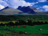 Ben Nevis and Pastoral Lands Near Gairloch, Scotland Photographic Print by Gareth McCormack