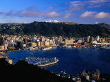 Wellington Harbour, Wellington, Wellington, New Zealand Photographic Print by David Wall