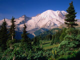 Mt. Rainier and Emmons Glacier from the Sunrise Area of Mt. Rainier National Park, Photographic Print
